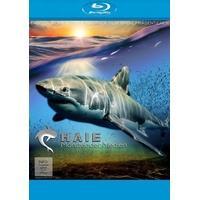 Produktbild Haie - Monster der Medien (Blu-ray Disc)